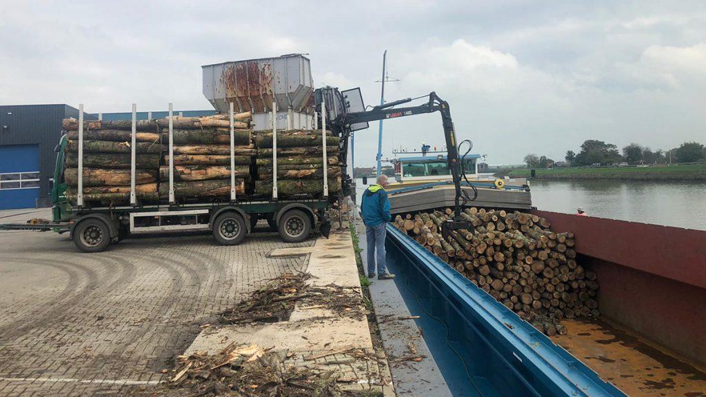 boomstammen worden van een vrachtwagen in een aak geladen