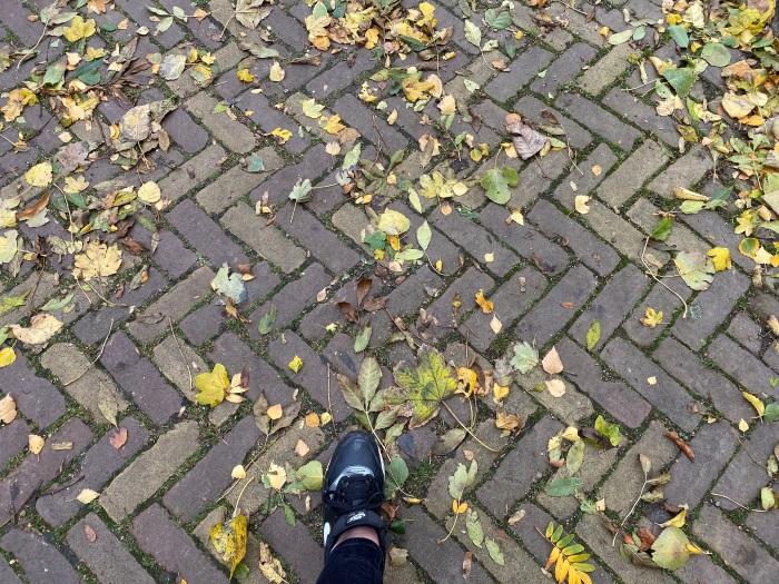 bladeren op straat